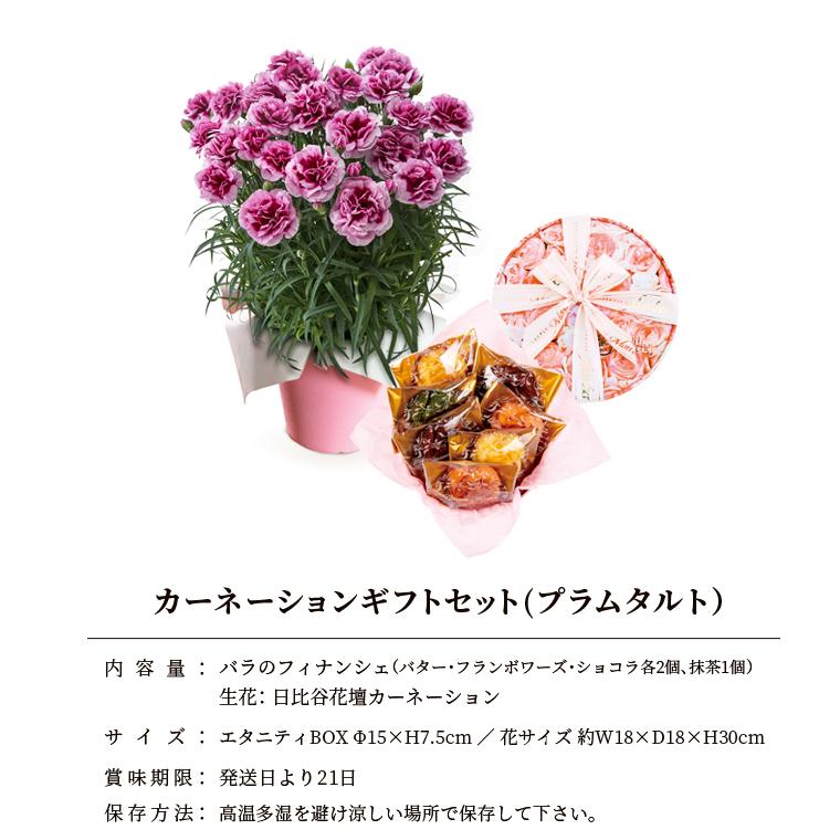 2021母の日限定 日比谷花壇×Mon cher カーネーションギフトセット