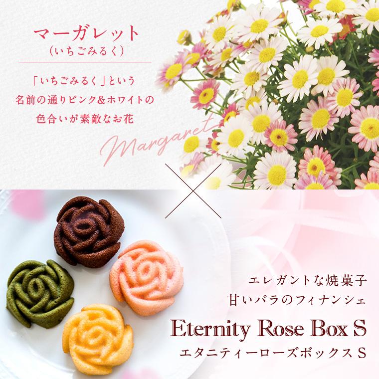 2021母の日限定 日比谷花壇×Mon cher マーガレットギフトセット